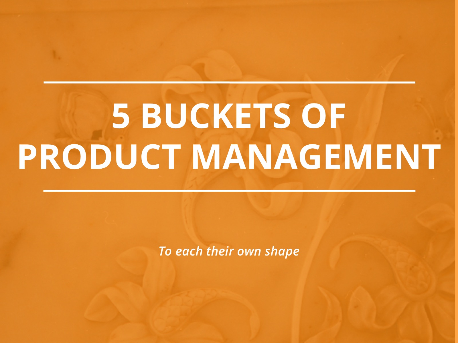 Read more about the article Five Buckets Model for Product Management