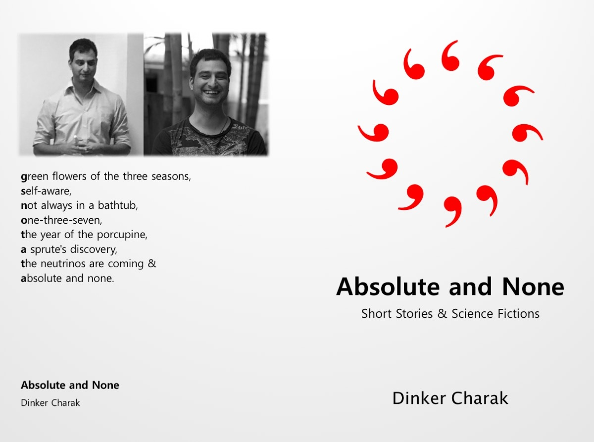About The Book: Absolute and None